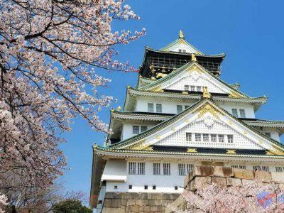 Có nên học ngành tiếng Nhật?