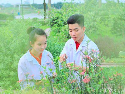 Tuyên sinh Dược sĩ (Cấp bằng Đại học Chính quy)